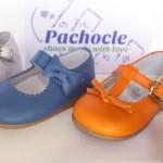 Pachocle