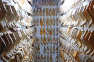 «Los mejores zapatos del mundo: hechos en Elda»