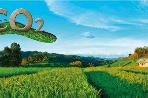 Rhenoflex, materiales ecológicos para el calzado que reducen la huella de carbono