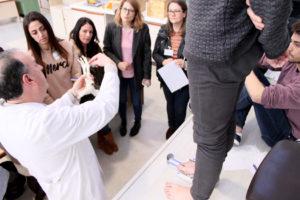 «Especialista en diseño y gestión de innovación aplicable al sector del calzado»