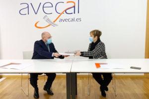 Avecal crea una comisión contra la falsificación de calzado en internet