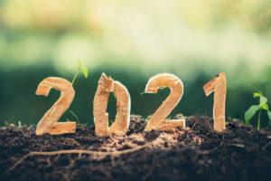 Rhenoflex: el año de la sostenibilidad