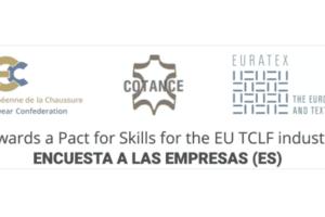 Encuesta para evaluar la situación de la formación en los sectores europeos del calzado, cuero y textil