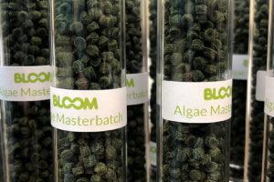 Bloom: zapatillas con suelas de algas