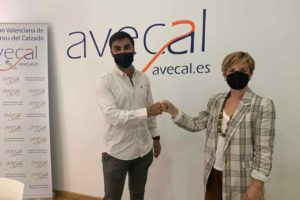 Avecal colabora con Texlenet para ofrecer un servicio de showroom virtual a las empresas de calzado